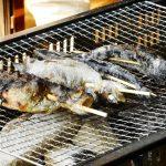 """<span class=""""title"""">東京都内近郊の釣りが楽しめるキャンプ場おすすめ8選!!釣った魚がその場で食べられる!</span>"""